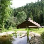 AXI-STM tó